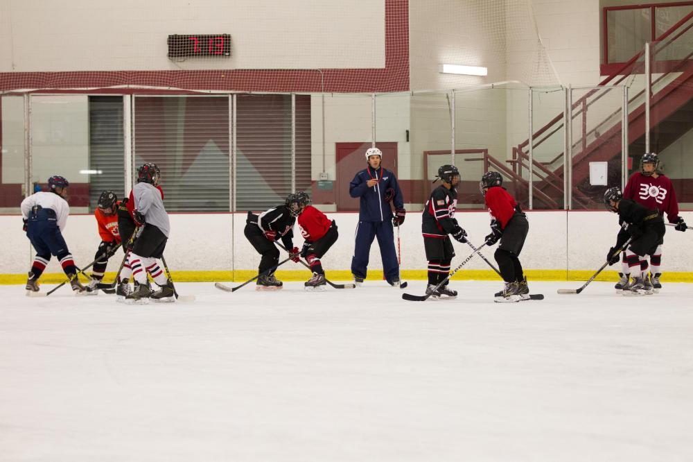 Hockey Things That Make You Go Hmmm ... Part 1